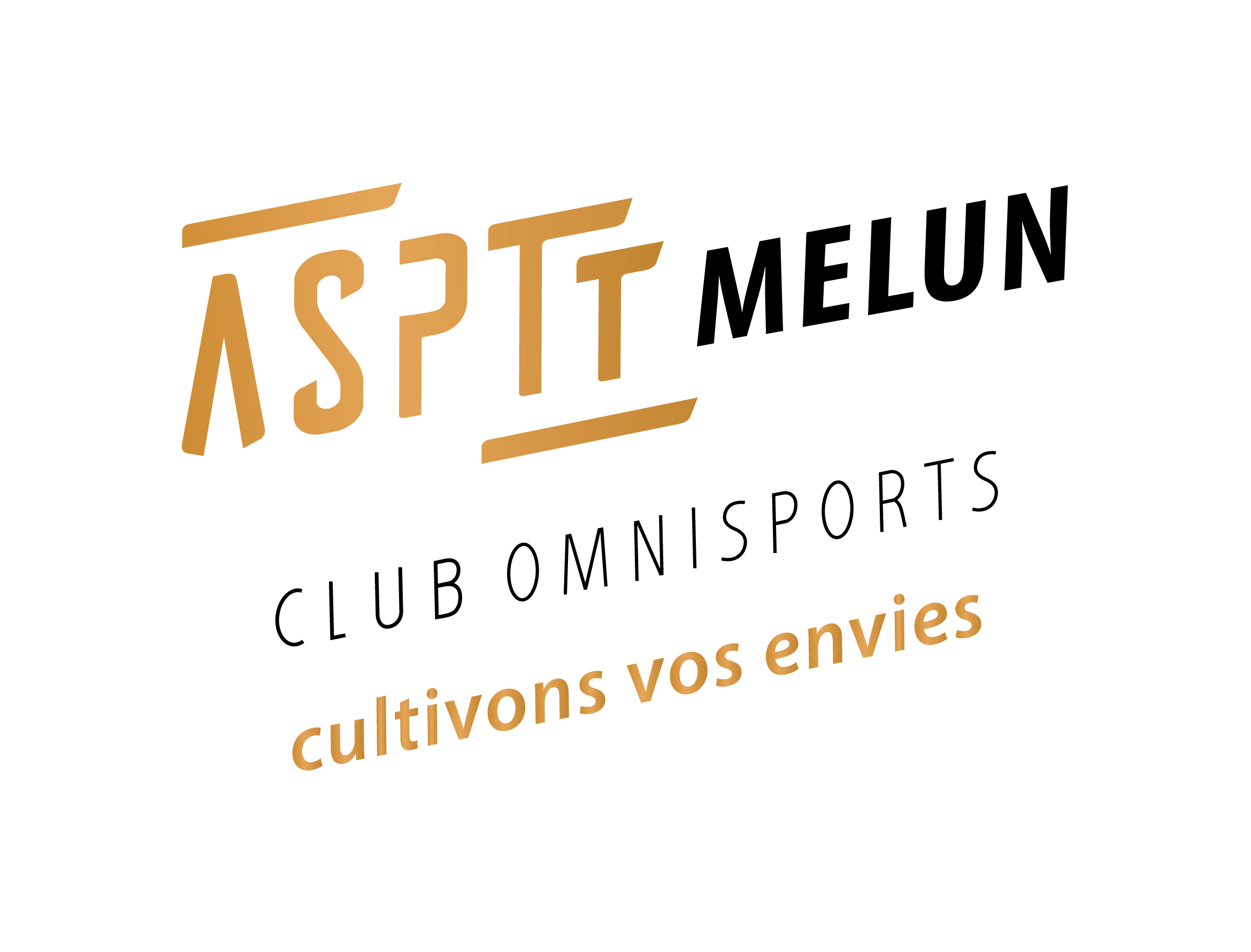 1 club 12 activités